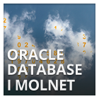oracle-database-i-molnet-140